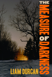 The Measure of Darkness - US cover